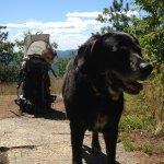 Bear 10/98 –10/15/2012