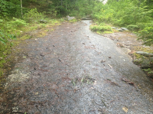 A slick bit of trail