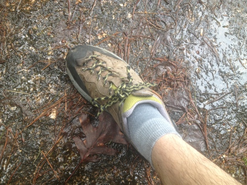 Greatest trail shoes ever!