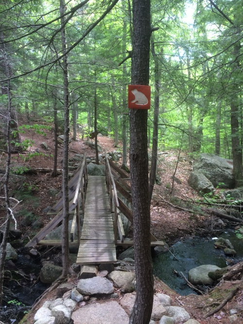 Bridges and trail signs