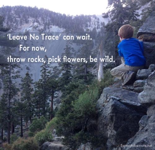 Throw Rocks. Be Wild.